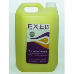 BioCosmética Exel enjuague germen de trigo 3.75 Lt