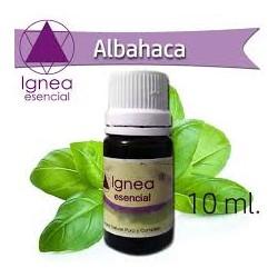 Ignea Esencial Albahaca