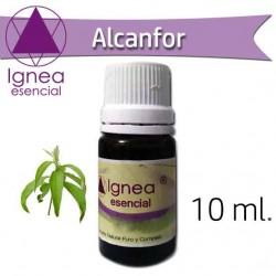 Ignea Esencial Alcanfor