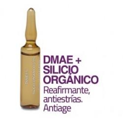 Dermassy Ampollas de DMAE 1% + Silicio Orgánico 1% 5 ml x 10 ampollas