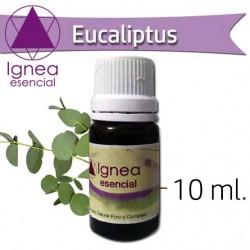 Ignea Aceite Esencial Eucalipto x 10 ml